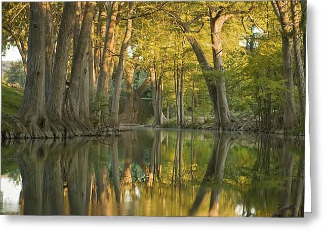 River Reflections Greeting Card by Paul Huchton