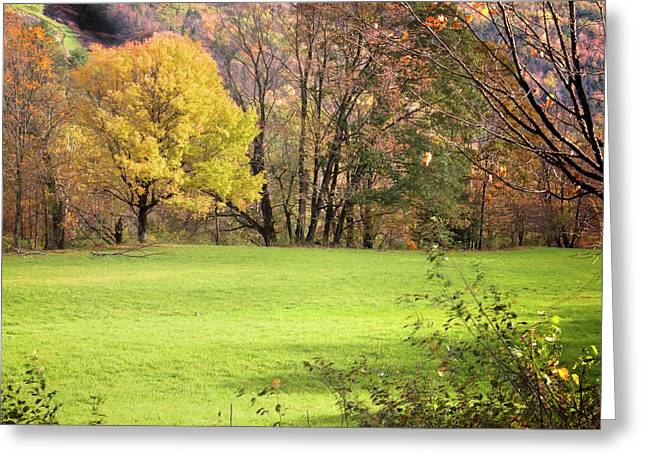 Greeting Card featuring the photograph River Road Field by Tom Singleton