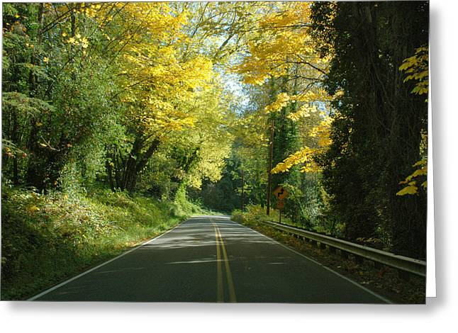 Road Through Autumn Greeting Card by Kathleen Grace