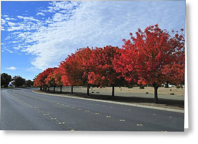 Road To Fall Colors Greeting Card by Richard Leon