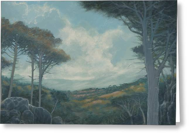 Road To Mt. Tam - Right Side Greeting Card by Marte Thompson
