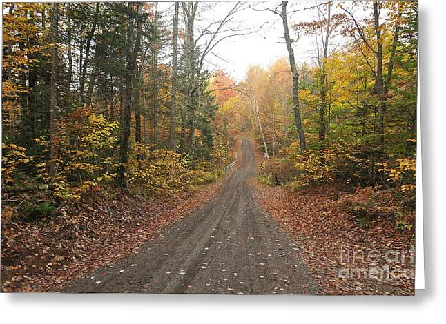 Roads Less Traveled Greeting Card