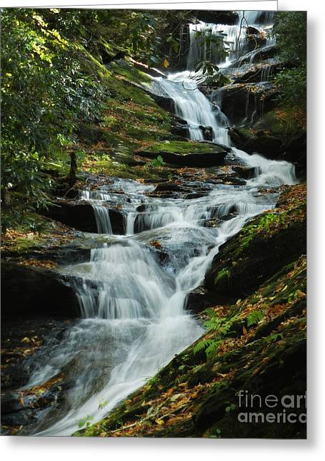 Greeting Card featuring the photograph Roaring Fork Falls by Deborah Smith