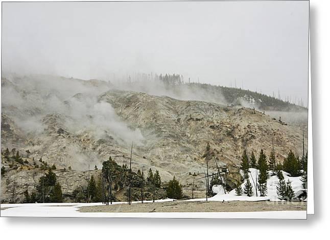 Roaring Mountain In Yellowstone Greeting Card by Charline Xia