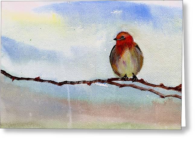 Robin 1 Greeting Card by Anil Nene