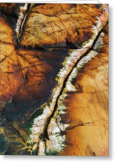 Rock Detail, Killarney Provincial Park Greeting Card by Mike Grandmailson