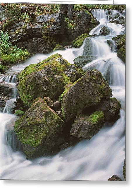 Rock Island Greeting Card