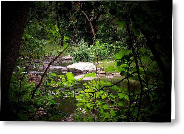 Rock Stream Greeting Card by Michael L Kimble