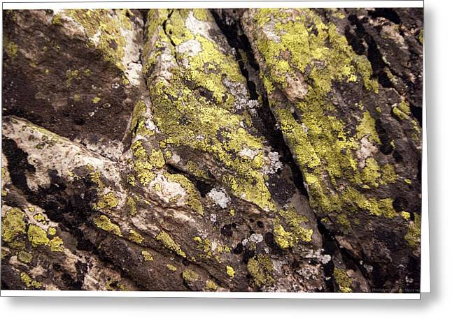 Rock Wall 1 Greeting Card by Mark Ivins
