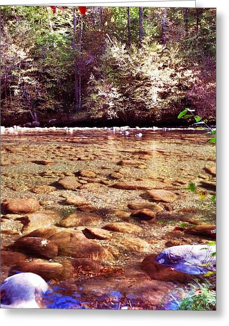 Greeting Card featuring the photograph Rock Work by Janice Spivey