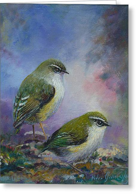 Rock Wren New Zealand Greeting Card by Peter Jean Caley