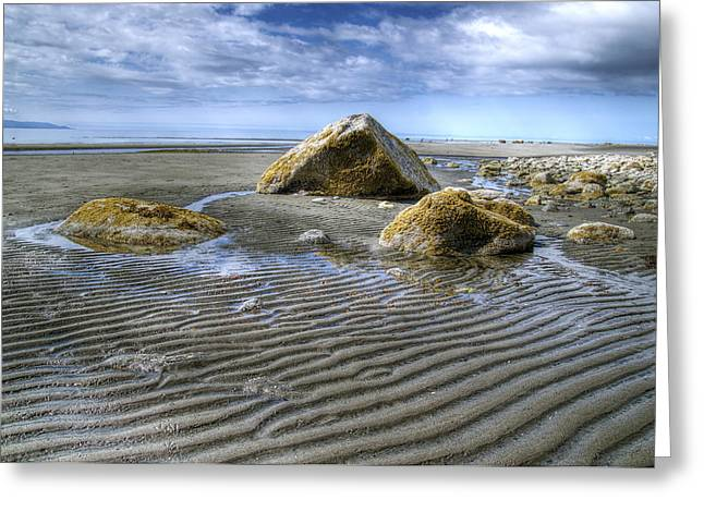 Rocks And Sand Greeting Card by Michele Cornelius