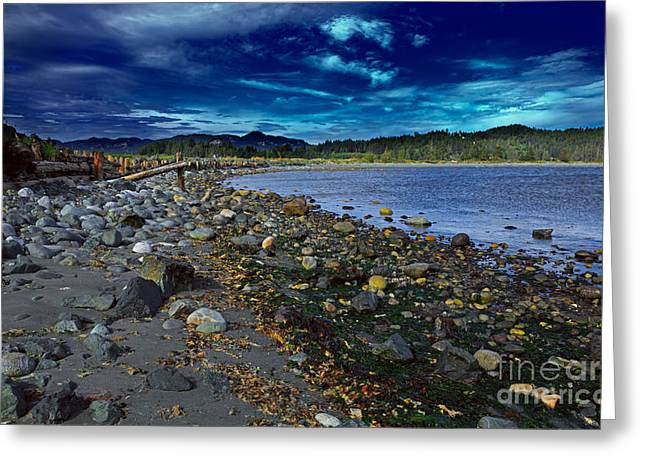 Rocky Beach In Western Canada Greeting Card by Louise Heusinkveld