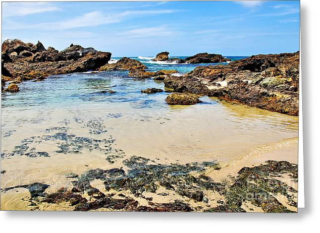 Rocky Beach View Greeting Card by Kaye Menner