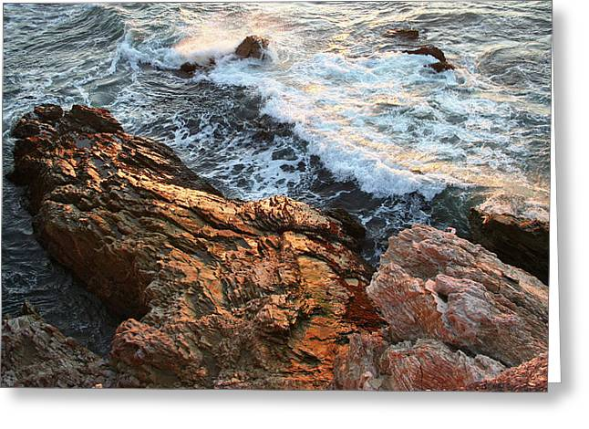 Greeting Card featuring the photograph Rocky Coast In Warm Sun by Michael Rock