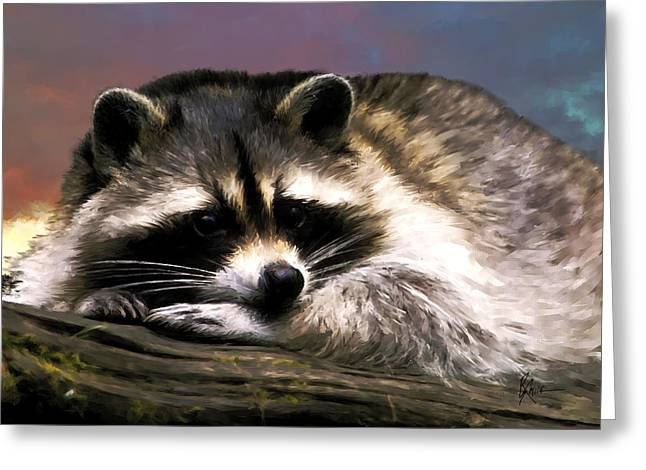 Rocky Raccoon Greeting Card