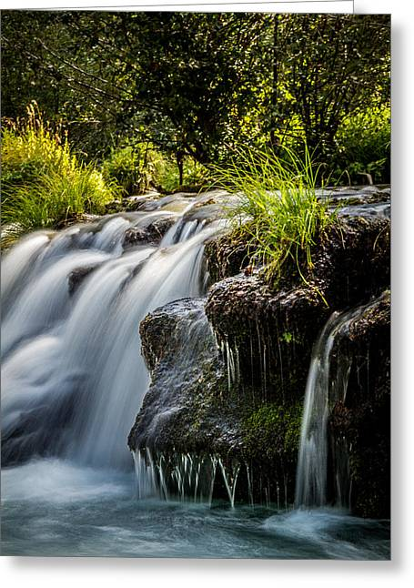 Greeting Card featuring the photograph Rogue River by Randy Wood