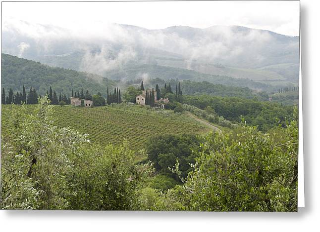 Rolling Green Hills, Wine And Olive Greeting Card by Keenpress