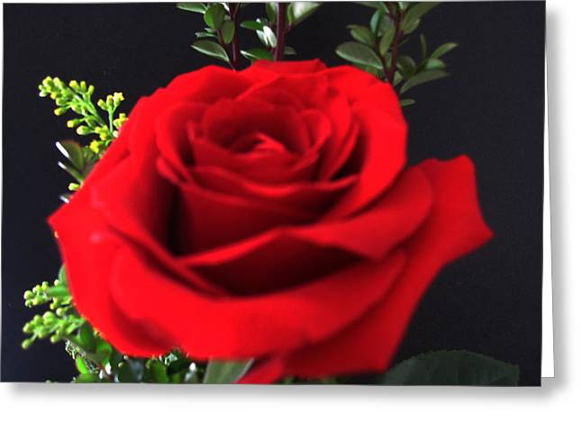 Romance Greeting Card by Tammy Sutherland