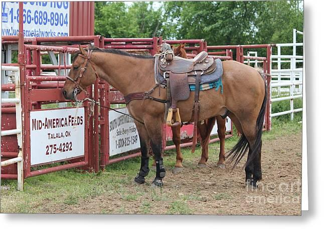 Roping Horse Greeting Card