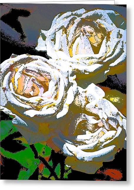 Rose 126 Greeting Card by Pamela Cooper