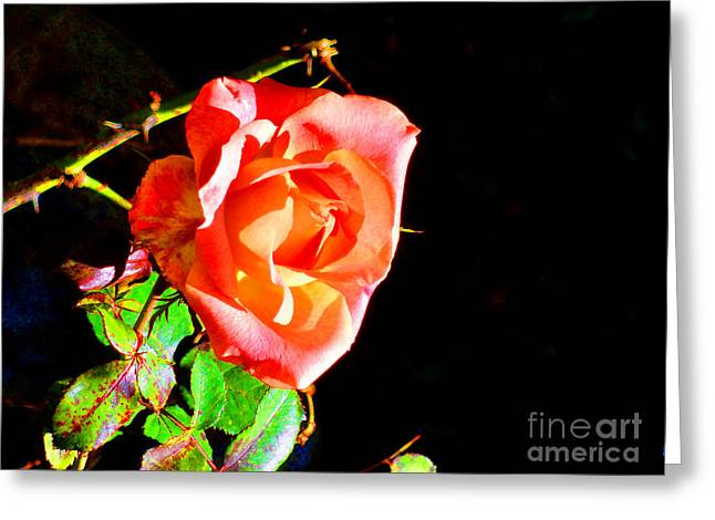 Rose And Thorns Greeting Card
