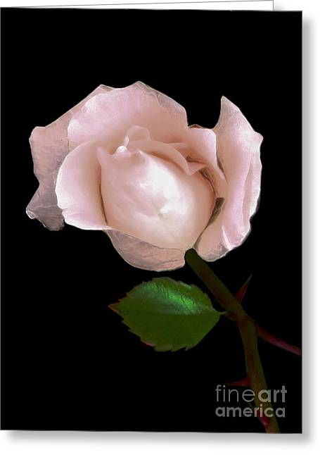 Rose Greeting Card by Dale   Ford