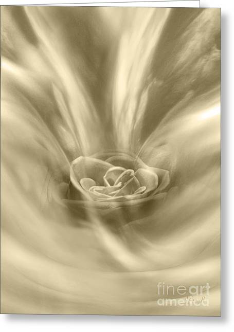 Greeting Card featuring the digital art Rose From A Dream by Johnny Hildingsson