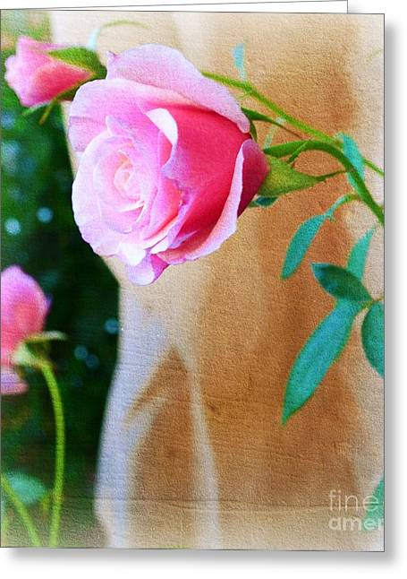 Rose In The Garden Greeting Card by Patricia  Sanders