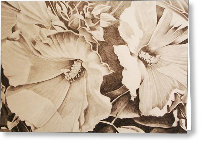 Rose Of Sharon Greeting Card by Yvonne Scott