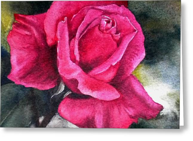 Rosenberger Rosa Family Rosaceae Greeting Card by Sandra Phryce-Jones