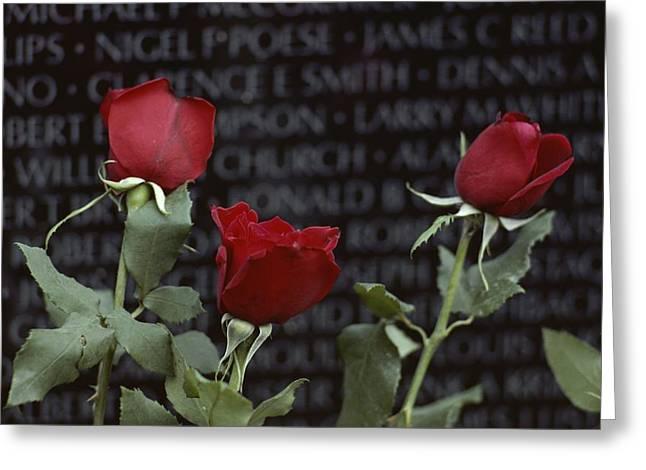 Roses Glow Against The Black Granite Greeting Card