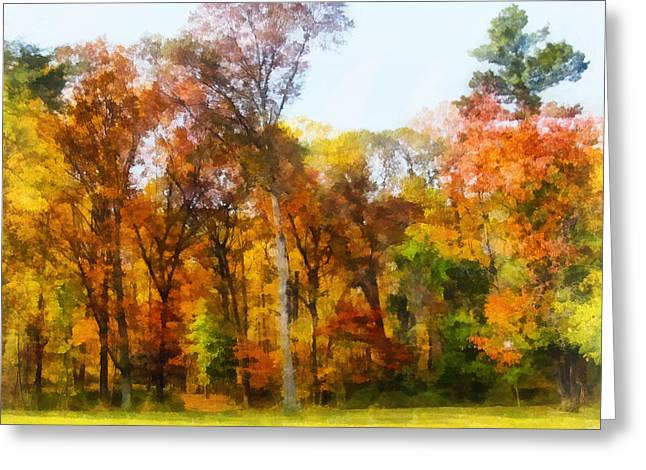 Row Of Autumn Trees Greeting Card by Susan Savad