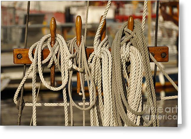 Row Of Ropes Greeting Card by Camille Lyver