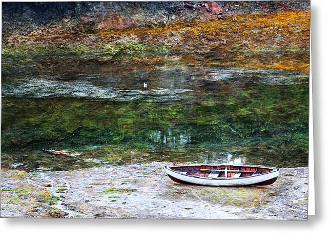 Greeting Card featuring the photograph Rowboat In The Slough by Michele Cornelius