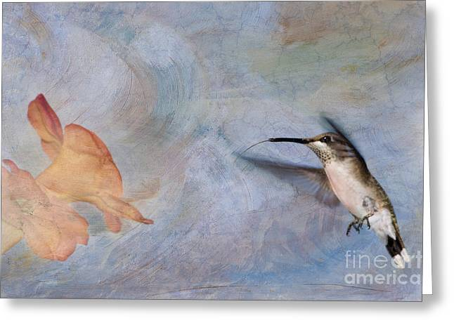 Ruby Throated Hummingbird 2 Greeting Card by Betty LaRue
