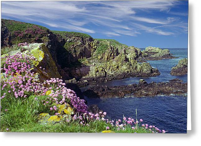 Greeting Card featuring the photograph Rugged Coast by Rod Jones