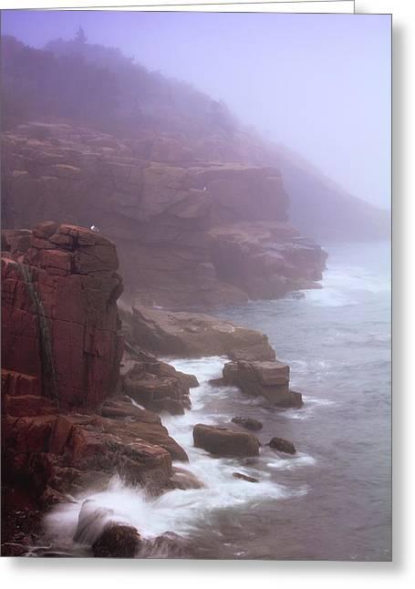 Rugged Seacoast In Mist Greeting Card