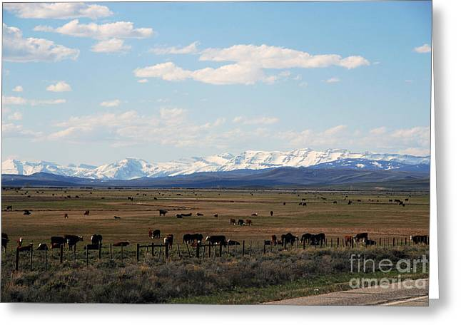 Rural Wyoming - On The Way To Jackson Hole Greeting Card by Susanne Van Hulst