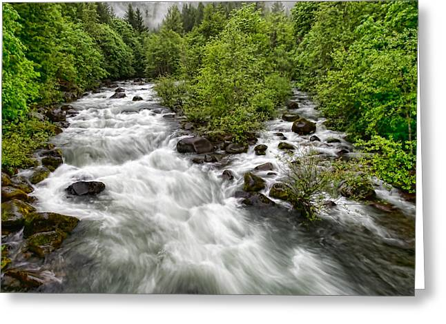 Rushing River Greeting Card by Donna Caplinger