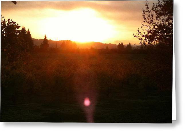Russian River Sunrise Greeting Card