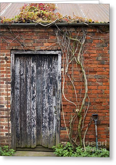 Rustic Door Greeting Card by Steev Stamford