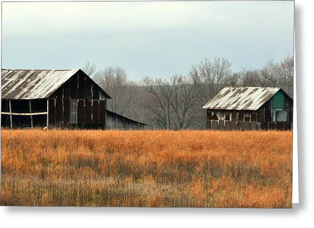 Rustic Illinois Greeting Card by Marty Koch
