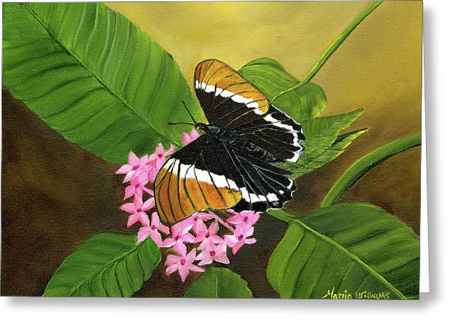 Rusty-tipped Butterfly  Greeting Card by Maria Williams