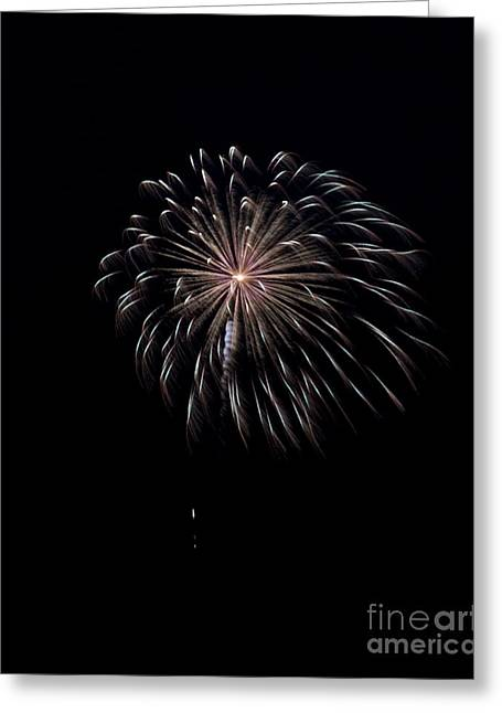 Greeting Card featuring the photograph Rvr Fireworks 10 by Mark Dodd