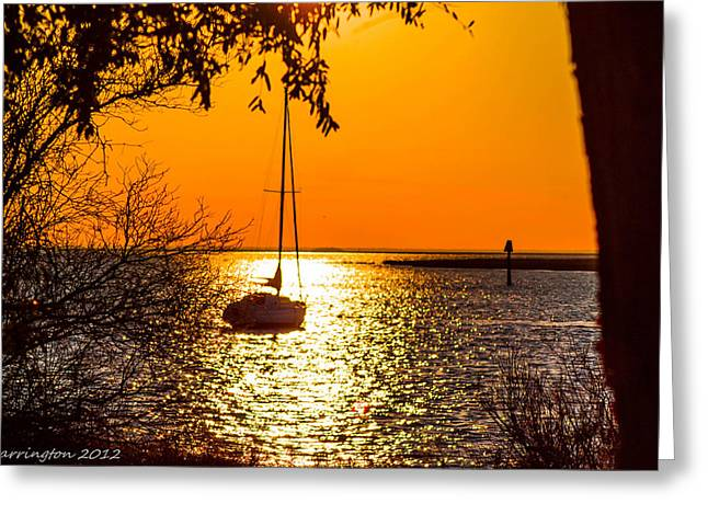 Greeting Card featuring the photograph Sail Away by Shannon Harrington