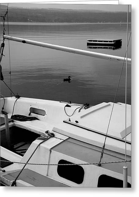 Sailboat And Lake II Greeting Card by Steven Ainsworth