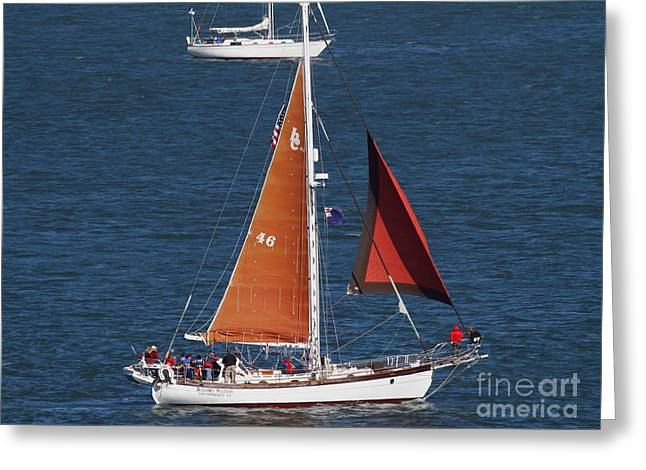 Sailboat In The San Francisco Bay . 7d7881 Greeting Card by Wingsdomain Art and Photography
