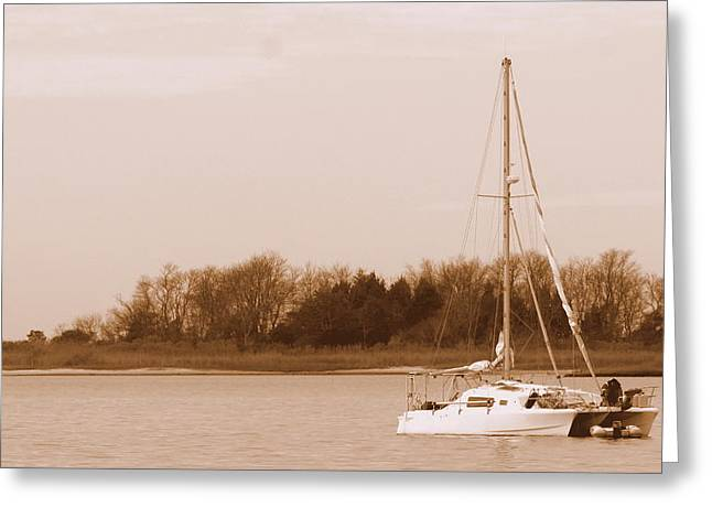 Sailboat On Chesapeake Greeting Card