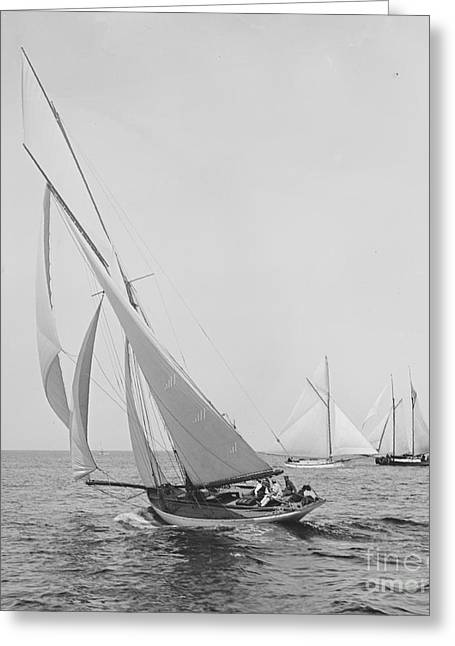 Sailboat Papoose 1887 Bw Greeting Card by Padre Art